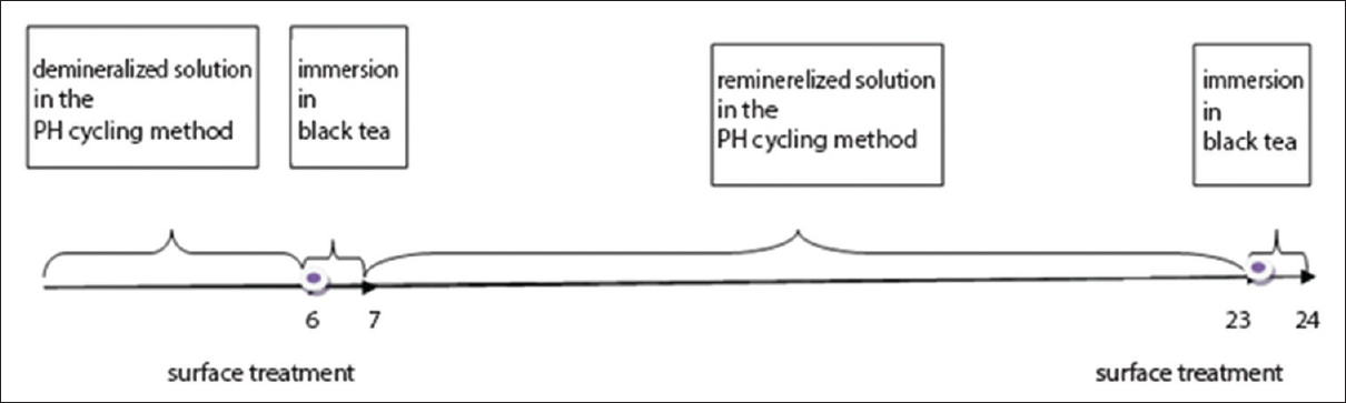 Figure 1: A schematic image of the pH-cycle model which was used in this study. Each cycle consisted of 6 h immersion in demineralizing solution and 16 h immersion in remineralizing solution. Before each demineralization and remineralization cycle, different treatments were applied to the enamel surfaces and then specimens were immersed in the black tea solution for 55 min. These cycles were repeated for 14 consecutive days.